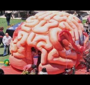 Embedded thumbnail for  ماذا بداخل دماغك؟